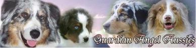 guardianaussies